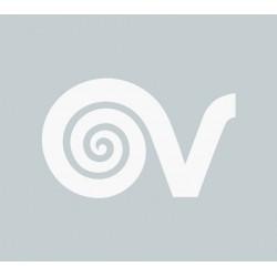 Filtru VORTICE carbon activ VX FC 60 cod VOR-22314